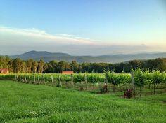 Fox Meadow Winery's fantastic view. (scheduled via http://www.tailwindapp.com?utm_source=pinterest&utm_medium=twpin&utm_content=post2546309&utm_campaign=scheduler_attribution)