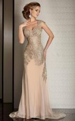 Champagne Special Occasion Dresses_Other dresses_dressesss Mother Of The Bride Gown, Mother Of Groom Dresses, Mothers Dresses, Bride Dresses, Long Formal Gowns, Formal Evening Dresses, Evening Gowns, Mermaid Evening Gown, Occasion Wear Dresses