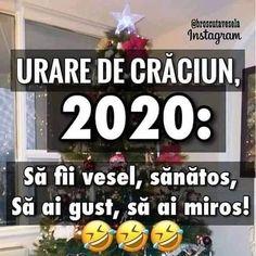 """Mi piace"": 174, commenti: 3 - Broscuta Vesela (@broscutavesela) su Instagram: ""😂😂😂"" Cringe, The Funny, Haha, Funny Quotes, Jokes, Humor, Instagram, Creative, Christmas"