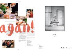 Companion Magazine