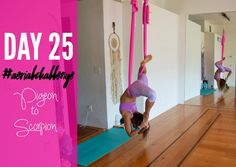 Day 25 of the #AerialChallenge with @Aerialist_Tay is Pigeon to Scorpion! Get an aerial yoga hammock HERE. Join us for a class in BEAUTIFUL Sarasota, Florida! Join us ONLINE September 7th-October…