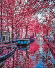 MEN'S VOWS: Amsterdam makes for an ideal medium-sized-city wedding destination.