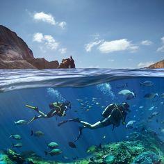 Fondos marinos #ElHierro - #IslasCanarias