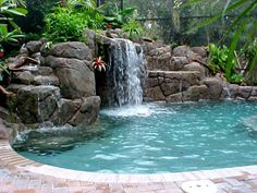 tropical pool.1