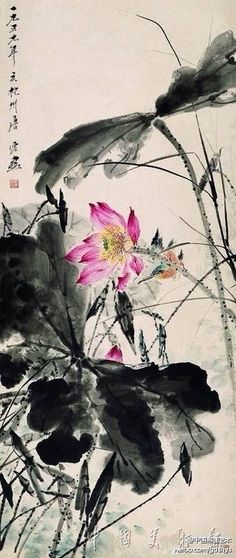"【Tang Yun ""Lotus kingfisher""] Tang Yun early works with pastoral style, seventies style tends to be dignified. ""Lotus Kingfisher"" in order to break the ink painting lotus leaves, interspersed with leaves and weeds, Mexican gas vivid. A lotus in full bloom, and the other leaves after Hebao Hanzo, kingfishers play in flowers, full of natural interest"
