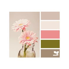 Design Seeds for all who color ❤ liked on Polyvore featuring colors, backgrounds, design seeds, pictures and colours