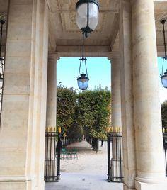 Balade au Jardin du Palais Royal  #parisjetaime #jardindupalaisroyal