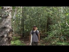Is Timmy Reyes Unreasonable? - YouTube
