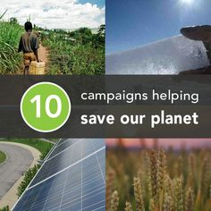 Campaigns Helping Save Our Planet Most