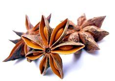 Star Anise is a moderate, sweet spice:   Best Season: winter/   Color Matches: black, brown/   Cuisine Matches: Chinese, Malaysian, Vietnamese/   Flavor Matches: allspice, black pepper, cattle, chicken, chili powder, cinnamon, clove, coriander, curry, duck, fig, fish, five spice, ginger, kumquat, leek, lime, mace, mango, milk chocolate, orange, oxtail, pear, pineapple, plum, pumpkin, rice wine, salmon, scallion, shrimp, soy, sweet potato, Szechuan pepper, tamarind, tea, tuna, turmeric…