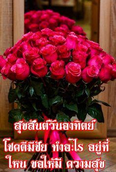 Flora, Raspberry, Christmas Wreaths, Beautiful, Fruit, Holiday Decor, Rose, Instagram Posts, Plants