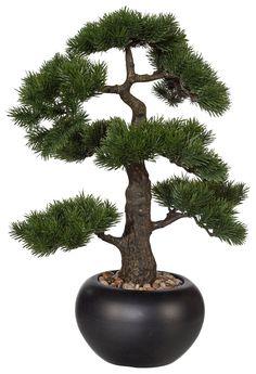 home affaire plastikpflanze »bonsai« grün jetzt bestellen unter, Garten dekoo