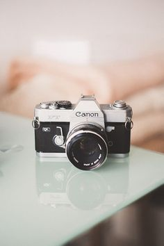 Are you a Canon or a Nikon type of camera person?