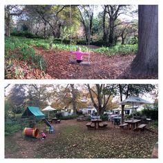 Little Streams Tea Garden in Constantia has a wonderful explorative garden.