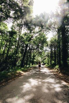 KURZTRIP NACH PORTUGAL TEIL 1: Unser Roadtrip zum Sintra National Park - welche Route dorthin du unbedingt nehmen solltest Roadtrip, Portugal, Country Roads, Park, Lifestyle, Fashion, Pictures, Lisbon, Travel Report