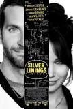 <i>Silver Linings Playbook</i> Beat Sheet