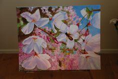Cherry Blossom Tree Painting | Cherry Blossom