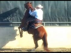 Learn how to fix horses that have bad behavior problems like bucking, rearing, biting, kicking and more at http://www.FixHorseProblems.com  This video explains what the online horse training course is about and how it can help you fix your horse's behavior problems.