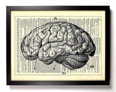 Would love for my art studio!  Anatomy Brain Human Anatomy Antique Book Art by…
