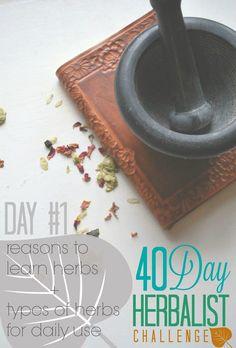 Why Learn Herbs? + Types of Herbs for Daily Use