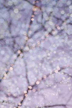 Pastel Fairy Lights Photo Set - Four Fine Art Photographs, Dreamy, Magical Home Decor, Nursery Decor, Large Wall Art Flowers Wallpaper, Sunflower Wallpaper, Purple Wallpaper, Lavender Aesthetic, Aesthetic Light, Purple Aesthetic, Tumblr Wallpaper, Paris Kunst, Fairy Lights Photos