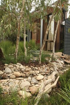 Garden Design for Small Gardens: Give Some Room, Look Bigger Back Gardens, Small Gardens, Outdoor Gardens, Australian Garden Design, Australian Native Garden, Bush Garden, Dry Garden, Water Garden, Rain Garden Design