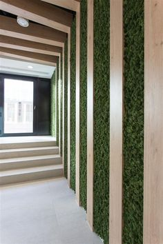 Greenery in Transitional Spaces