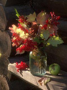 Фотография фотографа Сергей Алексеев - Осенний натюрморт