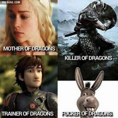 What would you do with a dragon?