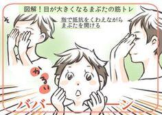 筋トレで目は大きくなる。意外と知らないまぶたの仕組み - 美人のタネ:レッツビューティ~レッツエンジョイ東京