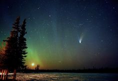 The Great Comet | by David Cartier