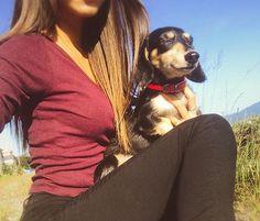 おさんぽ with かるび🐕 かるび最近おじいちゃんみたいになった😂 . . #犬 #わんこ #愛犬 #お散歩 #いい天気 #日光浴 #可愛すぎる #大好き #家族 #ペット #love #happy #cute #dog #family #life #sunnyday #sun #lovely #me #selfie  #girl #japan #instapic #instadaily #instadog #instagram