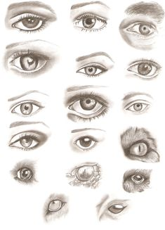 Easy Sketches of Eyes - Bing Images