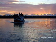 Emergence of a new day in the Amazon