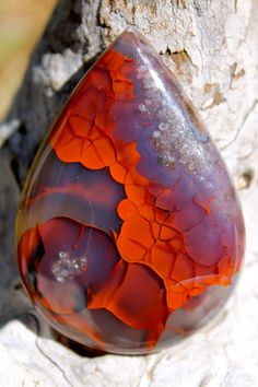 World class translucent TURKISH AGATE Red Rose by ExoticRox