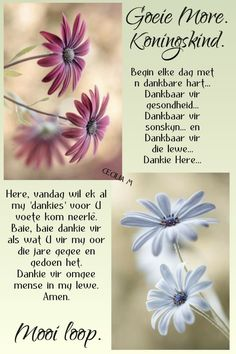 Good Morning Greetings, Good Morning Wishes, Day Wishes, Morning Messages, Good Morning Quotes, Prayer Quotes, True Quotes, Baie Dankie, Lekker Dag