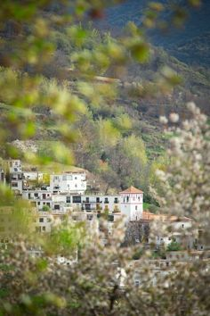 The village of Trevélez is the highest in mainland Spain, perched on a hillside in Las Alpujarras, foothills of the Sierra Nevada in Andalusia, Spain. Photo by Philip Lee Harvey.