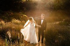 Christine Meintjes South African Weddings, Photographers, Engagement, Wedding Dresses, Gallery, Bride Dresses, Bridal Gowns, Roof Rack, Engagements