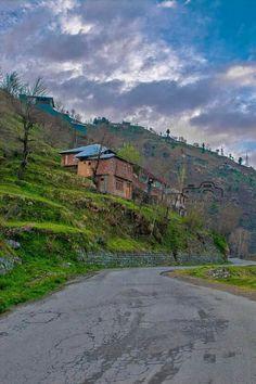Shangla, Swat Valley, KP. ❤