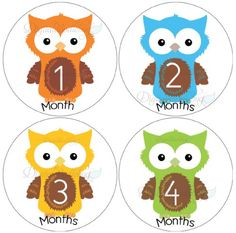 Owl Baby Month Stickers for Bodysuit