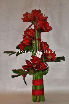 Fioreria Oltre/ Red amaryllis