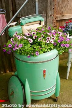 Flowers planted in a vintage washer