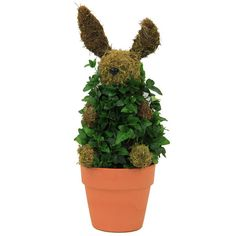 Ivy Bunny Topiary