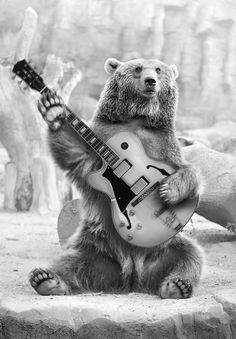 Animalandia I - bear,black and white,guitar,rock and roll,music,animals,zoo,hi,hola,saludo,musica,oso,rock,let´s go!,up,unreal,photoshop,creation,creación,digital,montaje