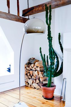 I love the pile of wood in the corner an how it contrasts with the stark white walls - rustic meets modern.