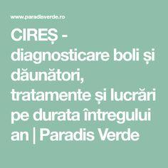 CIREȘ - diagnosticare boli și dăunători, tratamente și lucrări pe durata întregului an   Paradis Verde Green