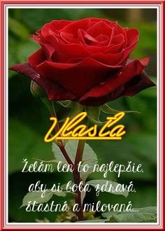 Deep red rose petals in your bath water assist in grounding your spirit Beautiful Flowers Wallpapers, Beautiful Rose Flowers, My Flower, Pretty Flowers, Red Flowers, Flowers Garden, Planting Flowers, Ronsard Rose, Hybrid Tea Roses