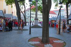 Top reasons why to visit Bratislava. There are many cities in Europe but only some have atmosphere that you will remember. Bratislava is one of them. Cities In Europe, Old Stone, Bratislava, Town Hall, Old Things, Tower, Street View, Museum, City