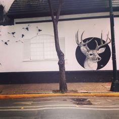Street art en la calle de Gelati