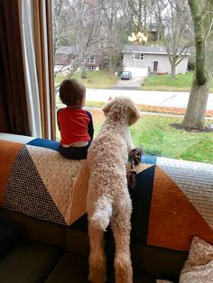 Boy and his best friend, a standard poodle puppy